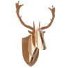 Moustache Deer Medium Trophy