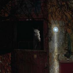 Antonangeli Baloon Outdoor Wall Lamp