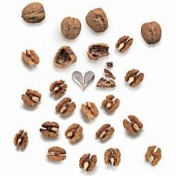 Alessi Nut Splitter
