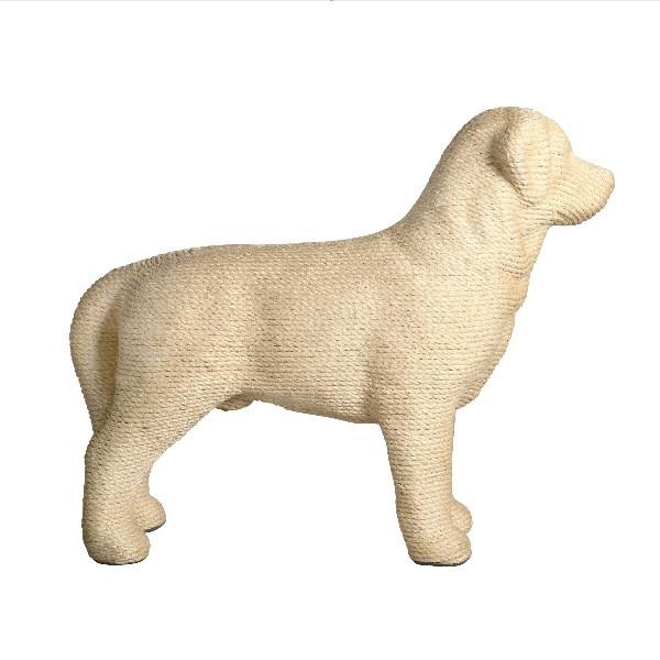 Dog Scratchpost