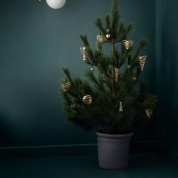 Stelton Christmas