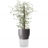 Eva Solo Self Watering Pot