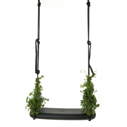 Droog Swing with the Plants...