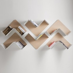 B Line Fishbone Shelf