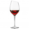 Eva Solo Syrah Glass