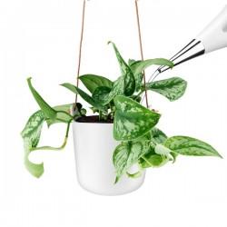 Eva Solo Self Watering Flower Pot