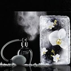 Alessi Room Spray Brrr