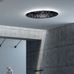 Fabbian Lens Wall/Ceiling Lamp