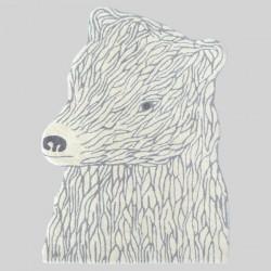 EO Bear Carpet
