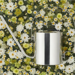 Stelton Original Flower Watering Can