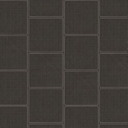 NLXL Cane Square Webbing Black