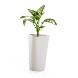 B Line Eve Plant Pot 71cm