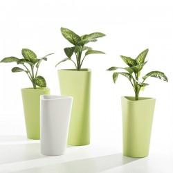 B Line Eve Plant Pot