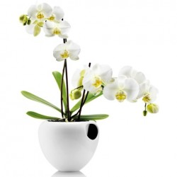 Eva Solo Orchid Pot White