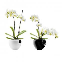 Eva Solo Orchid Pot White