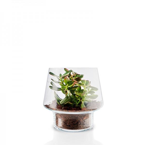 Eva Solo Succulent Glass Vase