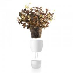 Eva Solo Self Watering Pot...